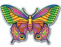 Butterflies Party Supplies, Dragonflies Party Supplies, Butterfly & Dragonfly Decorations