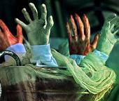 Fake Body Parts & Bones