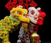 Chinese New Year Costumes