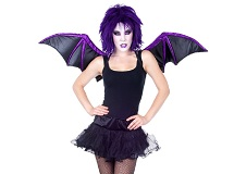 Wings - Fancy Dress Costume Accessories Costumes
