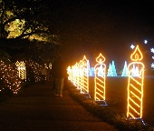 Christmas Path Lights