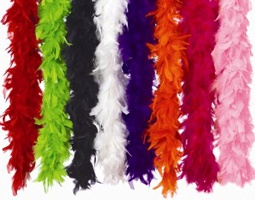 Feather Boas - Fancy Dress Costume Accessories Costumes
