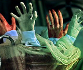 Body Parts & Bones