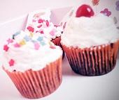 Cupcake Making & Baking Party Supplies