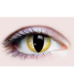 Contact Lenses - Primal, Thriller