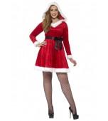 Adult Costume - Curves, Miss Santa