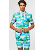Adult Costume - Opposuits, Flaminguy Summer