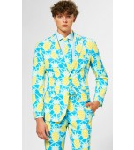 Adult Costume - Opposuits, Shineapple
