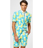 Adult Costume - Opposuits, Shineapple Summer