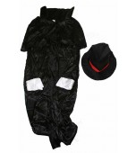 Adult Costume - Reaper