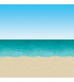 Backdrop - Ocean & Beach