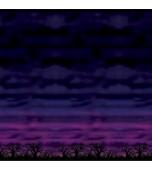 Backdrop - Spooky Sky