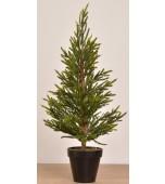 Christmas Tree - Pencil Pine, Green 50 cm