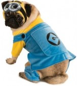 Dog Costume - Minions