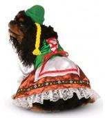 Dog Costume - Oktoberfest