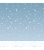 Backdrop - Winter Sky